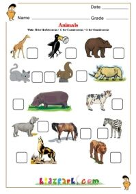 herbivore carnivore omnivore worksheets 5th grade with answer pdf