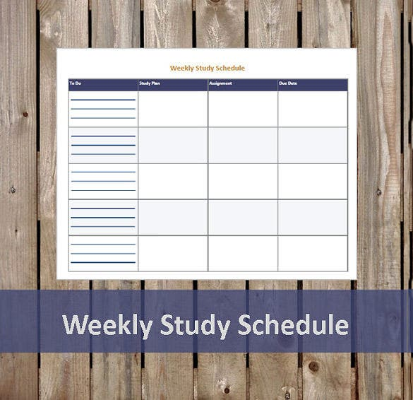study plan sample for undergraduate pdf